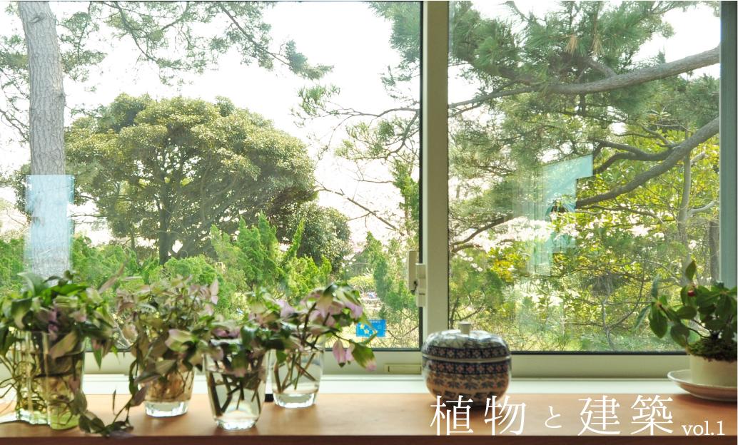 植物と建築