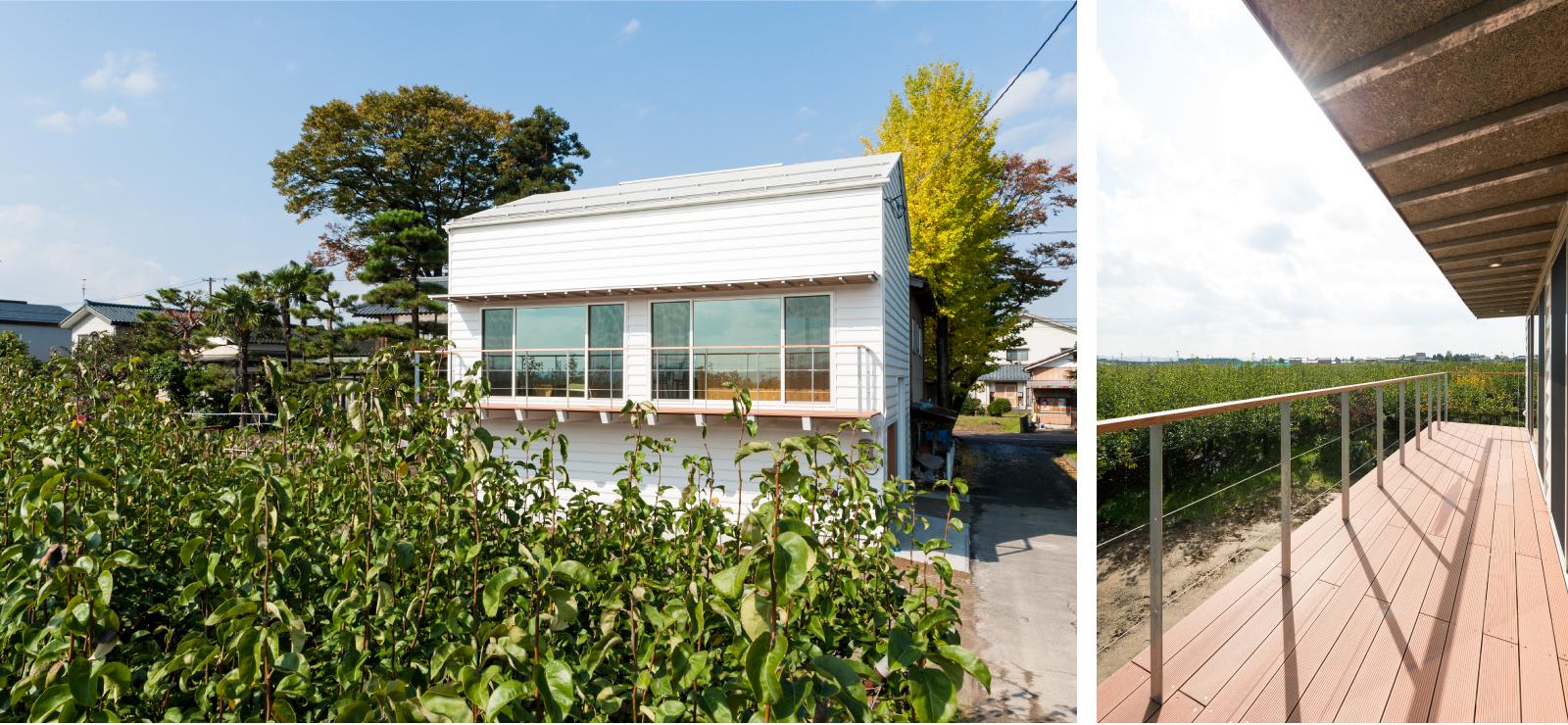 加茂市Nm_houseは梨畑に囲まれています。
