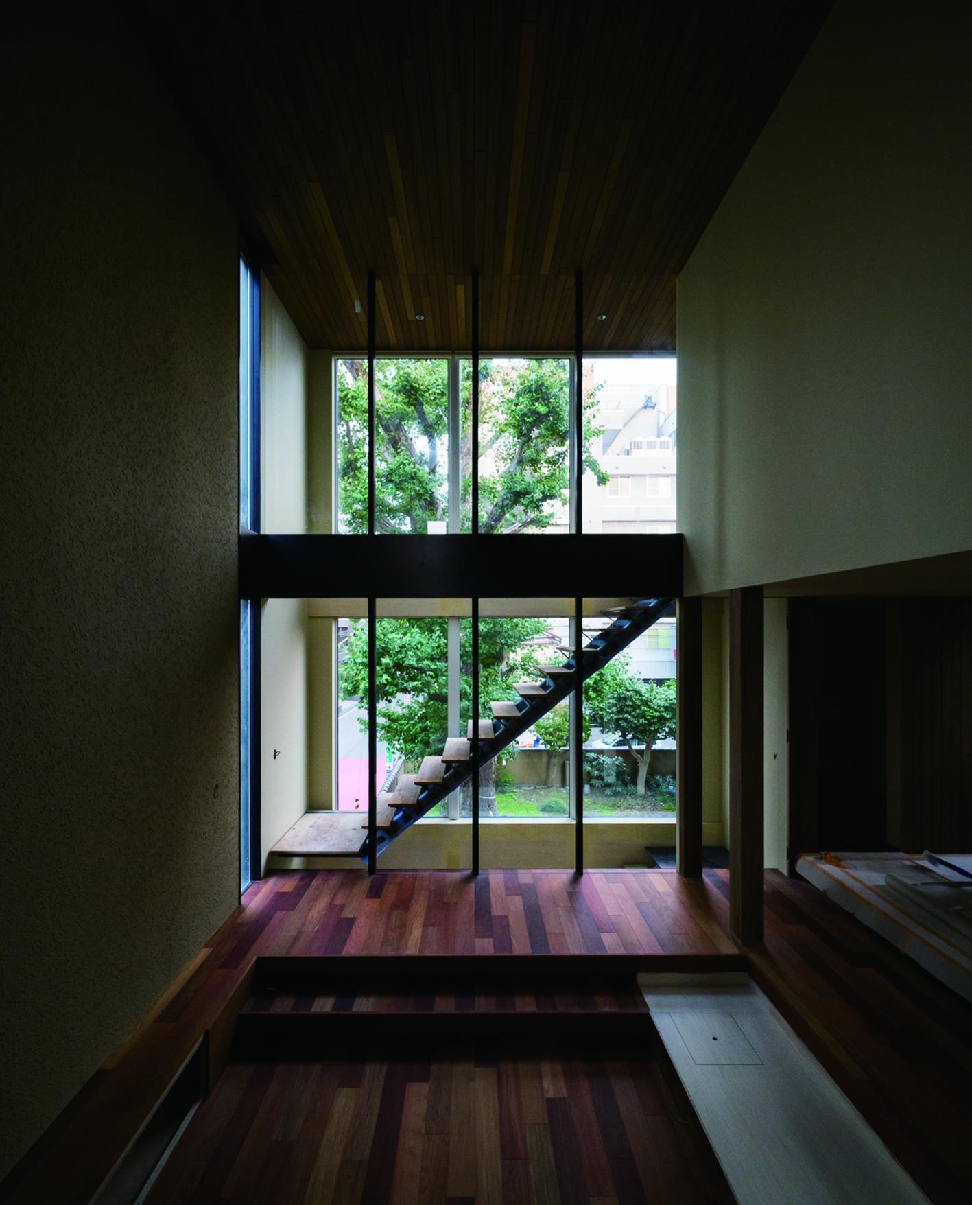 新潟市中央区オープンハウス、リビングからは樹齢約400年のイチョウの木が見える。